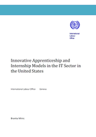 Innovative apprenticeship and internship models in the IT sector in the United States